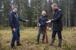 <p> Apple CEO Tim Cook tries his hand at the manual job of planting trees surrounded by Johan Granås, Sustainability Manager Iggesund Paperboard, andHenrik Sjölund, CEO of the Holmen Group. © Iggesund</p> (foto: Brooks Kraft)