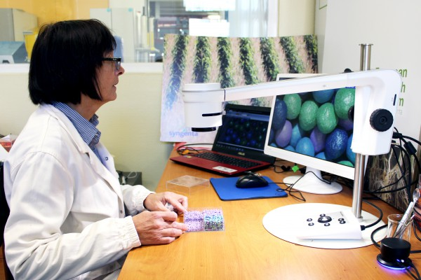 <p>Caption: Digital_microscope_seed_coating_visual_inspection</p>